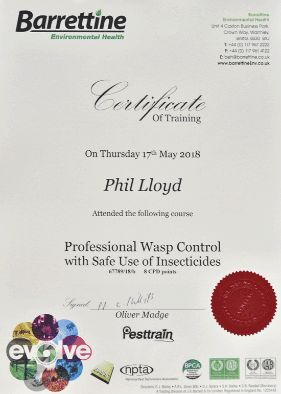 Phil is fully insured and certificated to treat wasp nests.