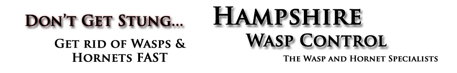 Wasp Nest Removal Hook - Hartley Wintney (RG27)