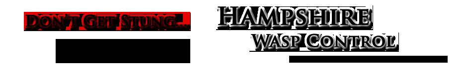 Wasp Nest Removal Bishops Waltham, Meonstoke